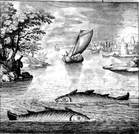 William zeitler composer author glass armonica for Sea spirit fishing